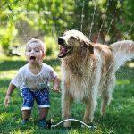 Djeca i psi – Veliki prijatelji